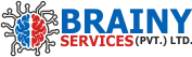 BRAINY SERVICES