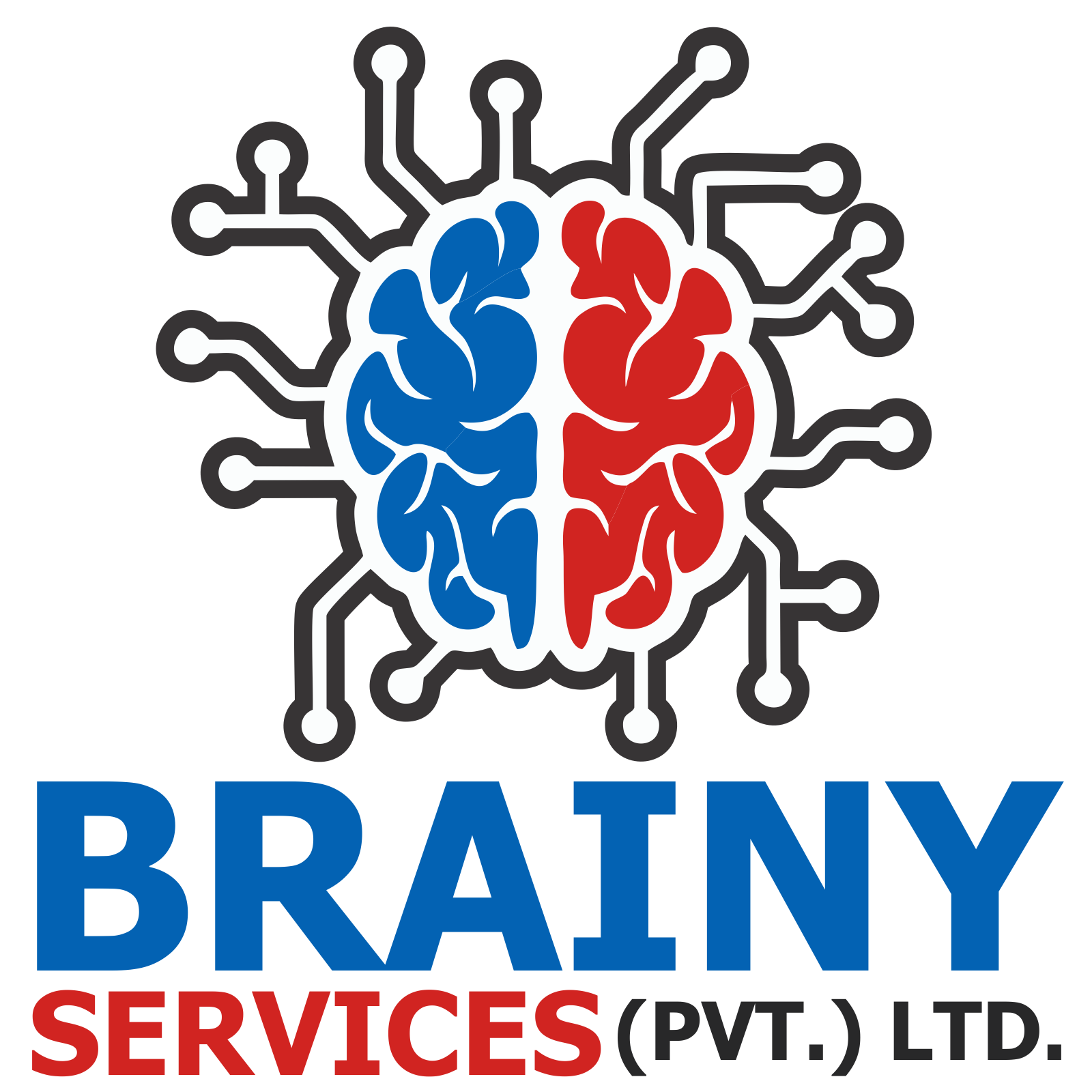 Brainy Services (Private) Limited